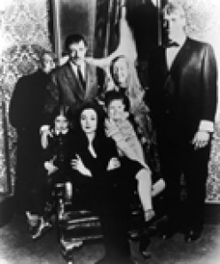 THE ADDAMS FAMILY WITH JOHN ASTIN AS GOMEZ, CAROLYN JONES AS MORTICIA, JACKIE COOGAN AS FESTER AND TED CASSIDY AS LURCH ENTERTAINED ME AND THE ALL OF AMERICA WITH THEIR DRY SENSE OF HUMOR.