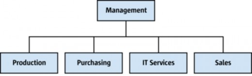 Sample Company Structure