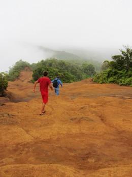 beginning of Pihea Trail