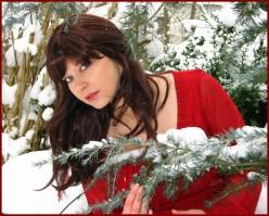 Frosty Red Dress