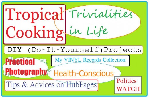 Travel Man's Advocacies on HubPages
