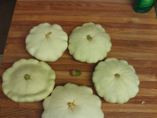 The circling of the patty pan squash.