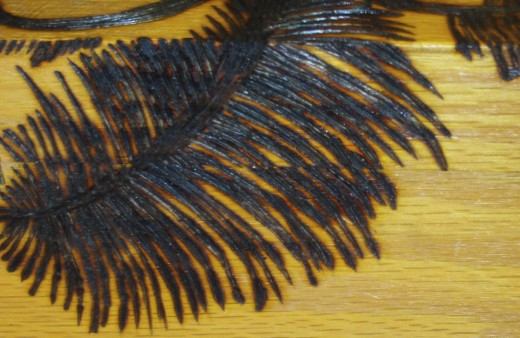 Here is a close-up of the palm tree frond I wood burned on the back of a box.
