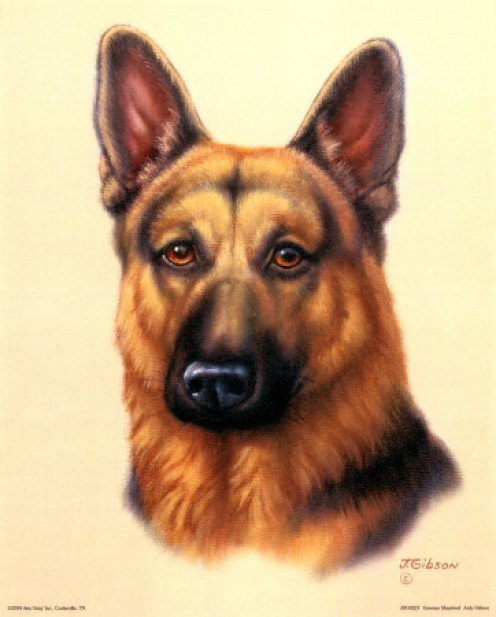 "A GERMAN SHEPHERD NAMED ""BUDDY,"" WAS A GREAT PAL OF MINE WHEN I WAS A CHILD."