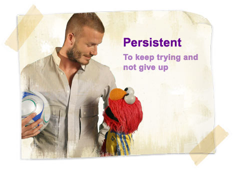 Even Beckham also agrees on being persistent. Be persistent and watch your page rank grow like a money tree.