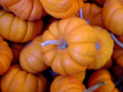 Pumpkins make great fall desserts.