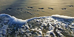 Footprints in the Sand from itsnickyyo Source: flickr.com