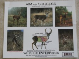 A practical guide to shot placement that displays shot recommendations on deer that are positioned at different angles.