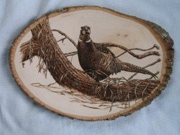 Wood Burning Pheasant