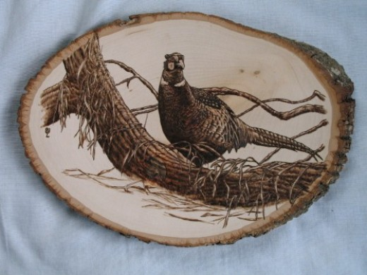 Wood Burning Pheasant