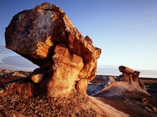 So these petrified trees all over the world, that had to end up like this from some powerful flood!