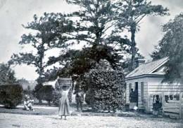 Edisto Island, SC in 1862