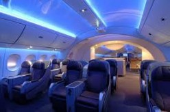 The Luxurious 787 Dream Liner