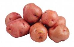 Not Your Average Potato Salad Recipe