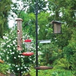 Multi Bird Feeding Station
