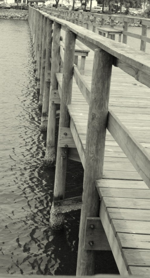 Fishing pier.  The pier had it's own rustic beauty that I had to try to capture.   photo by AMB