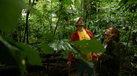 This is an excellent video! Go on a hike and discover the pawpaw in Virginia with NPR's food correspondent, Allison Aubrey.