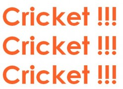 Why Indians Are So Crazy About Cricket?