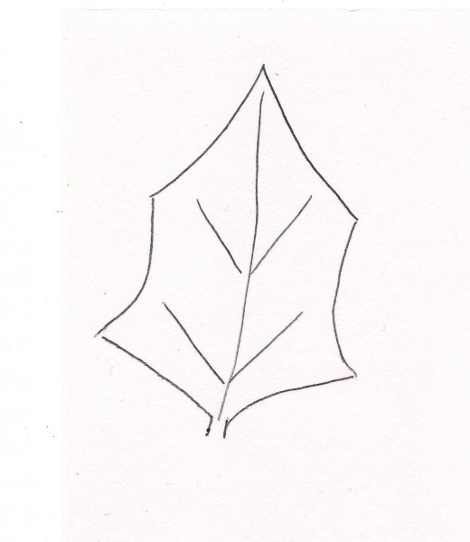 Can you draw this shape?  You can?  Good!  This is very important to the rest of what you're going to do.