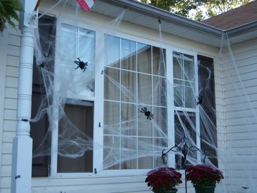 Cobwebs on the window