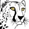 KaisaJordan profile image