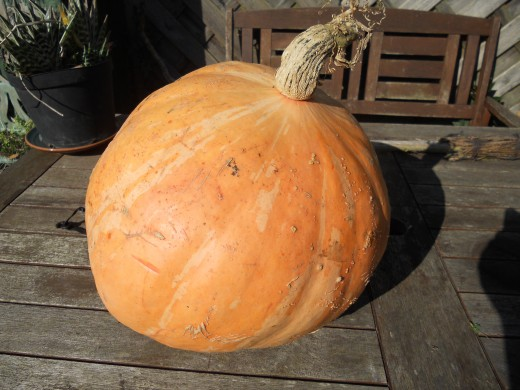 A large pumpkin