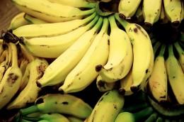 Banana, Fernando Stankuns, Flickr.com