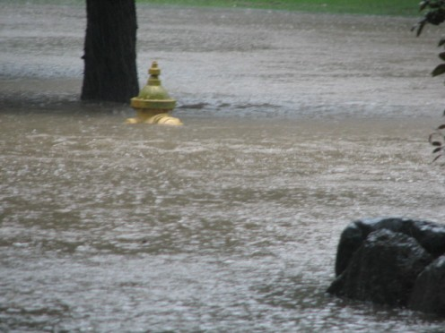 My water gauge was the fire hydrant just across the street, photo shot from my front porch.