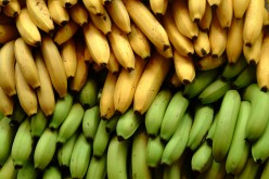 Why should we eat Bananas, and When to eat the bananas to avoid Constipation