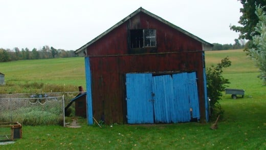 Old barn with dog kennel attached