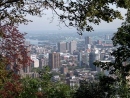 View of the city from Mont Royal.