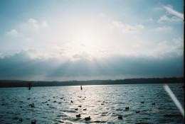 Duck season at Reelfoot