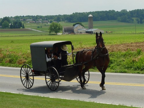 Amish people drive in horse-drawn carriages.  They are, however, allowed to ride in cars if someone else is driving the vehicle.
