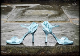 Our photographer took my shoes for a walk prior to the ceremony to get this shot. I found these shoes at DSW.com