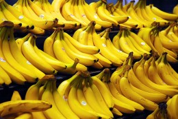 Bananas are very healthy for you and an excellent source of potassium.