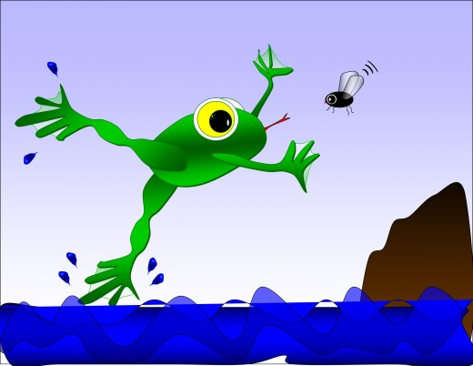 Be the frog!!!