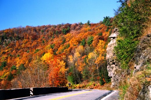 Make a fall foliage drive a fun activity for kids.