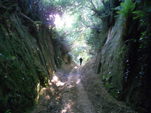 A stranger approaches in a deep sunken country lane