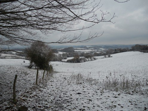 The bleak mid-winter in the Dorset countryside