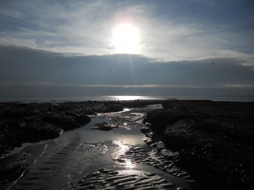The winter sun illuminates the beach at low tide. (Charmouth Beach, January 2011)