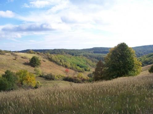 The Mecsek Hills