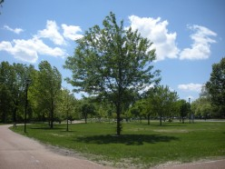 Lovely trees, walkways, and places to picnic or rest and enjoy the scenery by the Missouri River.