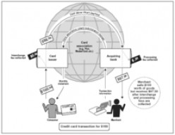 HOW INTERCHANGE FEES WORK