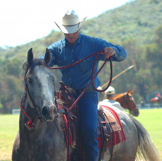 horse meat unethical methods Takeaway: horse meat, when it is properly slaughtered from a horse that has been able to feed from the pasture and have high quality nutritious food supplements, is a high quality animal protein the problem, however, is that a majority of horses don't get these kinds of opportunities.