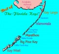Marathon Florida In The Florida Keys
