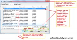 """An example of a window, and marked services that you need to """"uncheck""""/click - on the check-box.   === CLICK TO ENLARGE ==="""