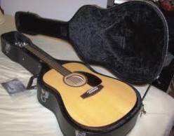 The Seagull M6 Acoustic Guitar.