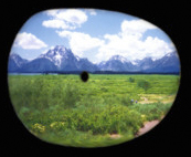 Peripheral vision becomes fuzzy or absent, and over time, so can the center field of vision.