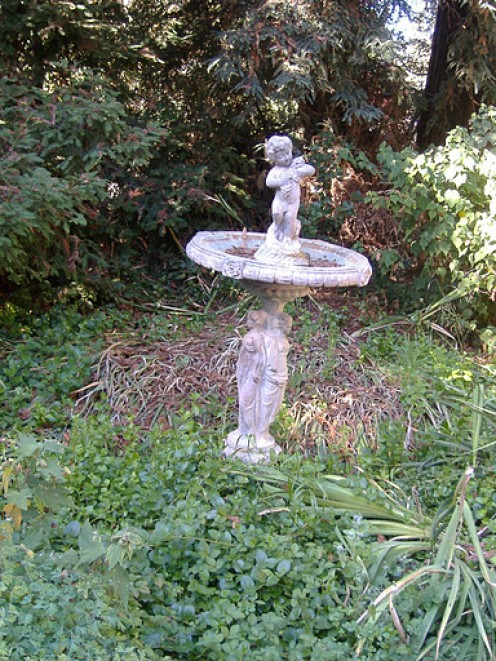 I absolutely adore this bird bath. The angel is fantastic, so much so that I took several close-ups of it. I also love the bleached out color.