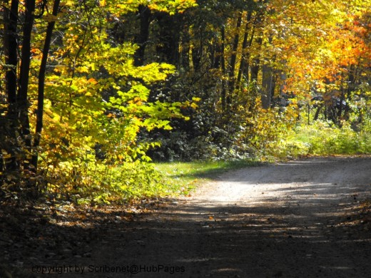 5.) Can you hear the gravel crunch as you walk...it is so quiet....ahhh!